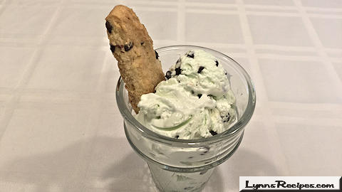 No Churn Mint Chocolate Chip Ice Cream